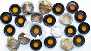 Светофильтры на бинокль Б6х30, Б8х30, Бпц8х30, Бпп8х30, Б12х40, Бпц12х45, Бп